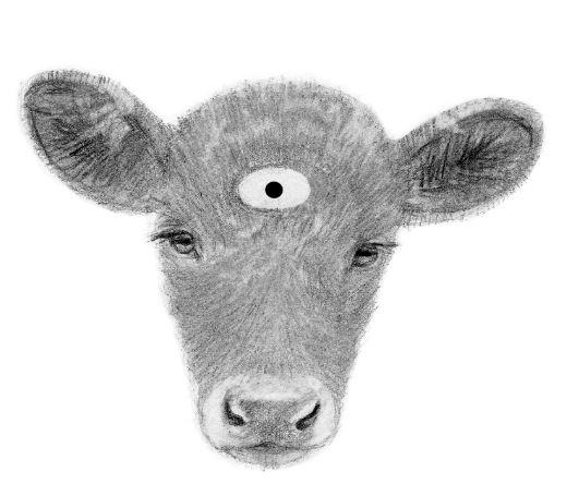 calf-fr